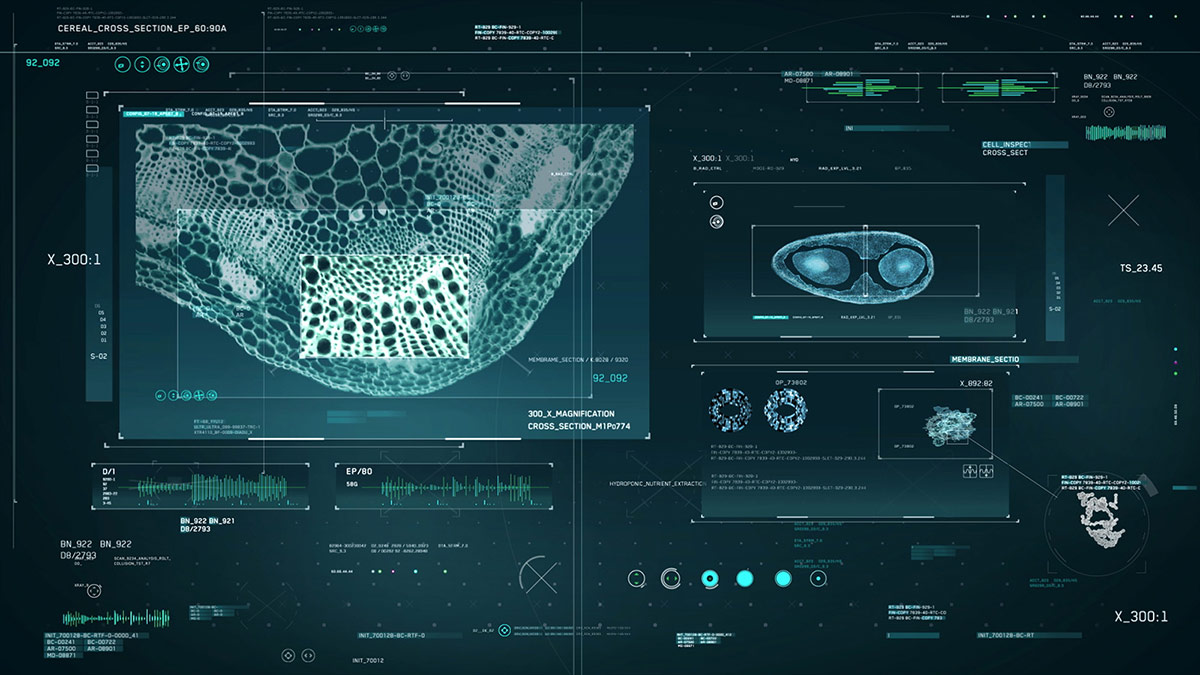 Is Ai Really The Future Of User Interface